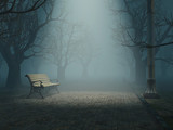 lonely bench in misty park - 28894426