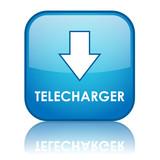 Bouton Web TELECHARGER (téléchargement internet fichiers bleu)