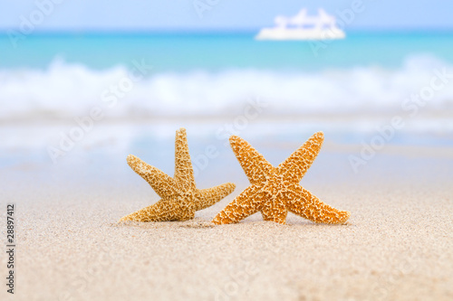 two starfish on beach, blue sea and white boat - 28897412