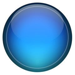 Blue Icon Button