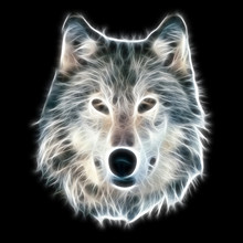 Fractal Illustration Loup