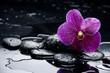 Fototapeten,alternative,aromatherapie,schönheit,schwarz