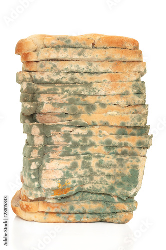 Mouldy Bread Loaf
