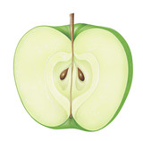 Piece of Green Apple