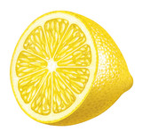 Piece of lemon