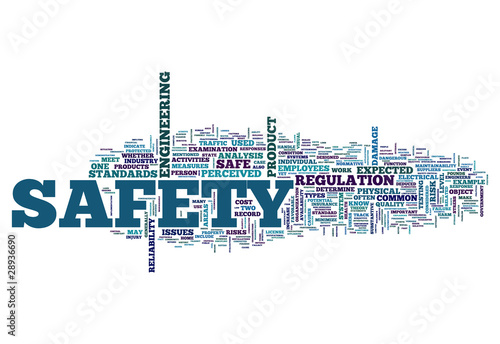 "Word Cloud ""Safety"""