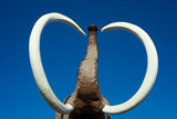Woolly Mammoth tusks and trunk poster