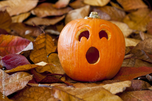 Surprised Jack-O-Lantern with Leaves
