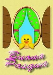 Buona Pasqua: pulcino dal balcone