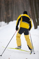 Cross-country skiing man - back view