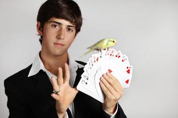 truco de magia de joven  mago con cartas de poker  y periquito