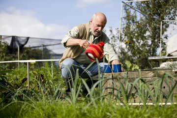 A man pouring tea in a cup on an allotment