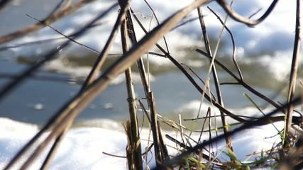 Fluss & Strömung