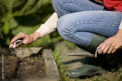 A female gardener sowing seeds on an allotment