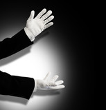 Illusionist white gloves