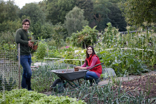 A young couple working on an allotment