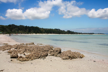Rangiputa Beach, Northland, New Zealand 3