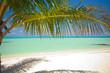 Fototapeten,malediven,stranden,meer,palme