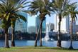 Orlando, Florida. Lake Eola and palm trees in foreground.