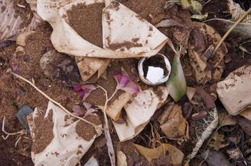 Domestic Compost