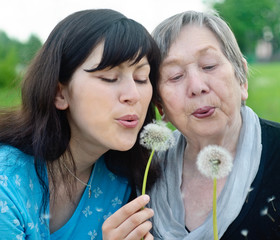 Happy grandmother and grand daughter with dandelions on the mead
