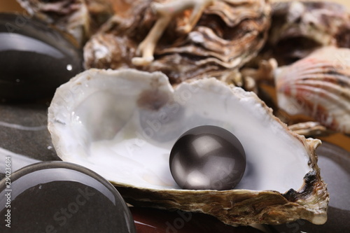 Image of a black pearl in the shell on wet pebbles. - 29023684