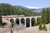 passenger train on railway viaduct near Telgart, Slovakia poster