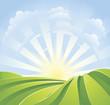Idyllic green fields with sunshine rays and blue sky