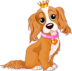 Royalty dog
