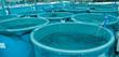 Agriculture aquaculture farm - 29047267