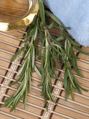 fresh rosemary with warm massage oil in a spa