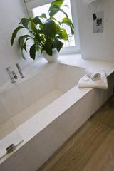 dettaglio della vasca da bagno