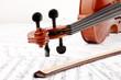 Geigenhals und Bogen
