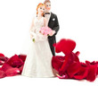 bride and groom with rose petals