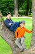 Boys in a Tree