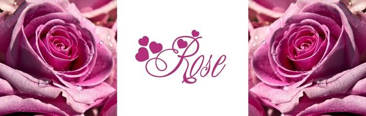 Roses et amour