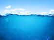 Leinwandbild Motiv underwater scene
