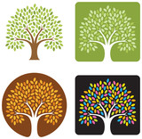 Fototapety tree logo/icon with 4 variations