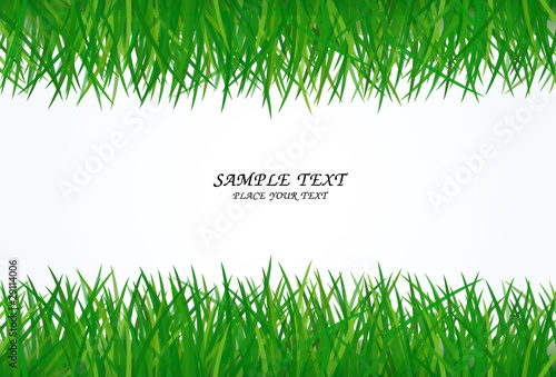 green grass frame with text area copyspace isolated