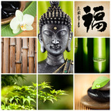bouddha bambou zen