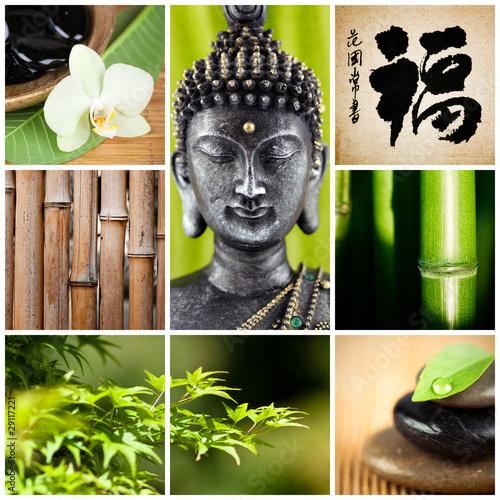 Poster bouddha bambou zen