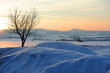 Quadro winter landscape in sunset
