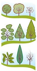 Alberi vari foglie