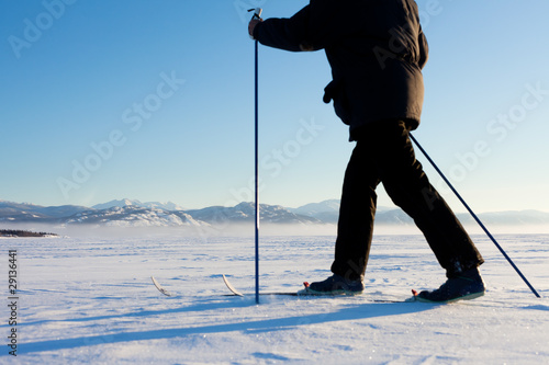 Cross-Country Skier in Tracks