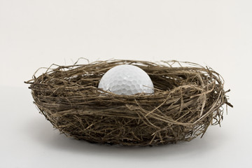 golf ball in  the bird nest