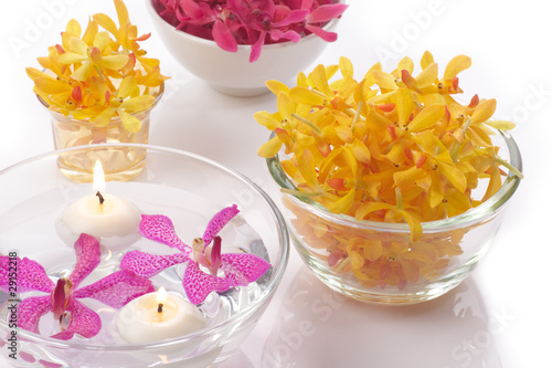 orchid head and candle