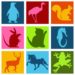 Pictogrammes animaux multicolore