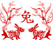 Papercut of Rabbit Lunar year