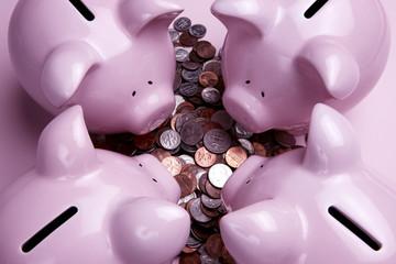 Piggy Banks feeding on coins