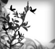 Fototapete Floral - Vögel - Hintergrund